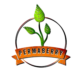 logo HD permaberry_edited.png