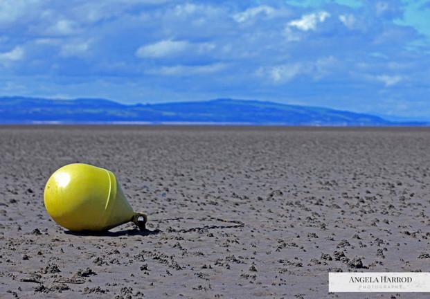 lonely buoy.jpg