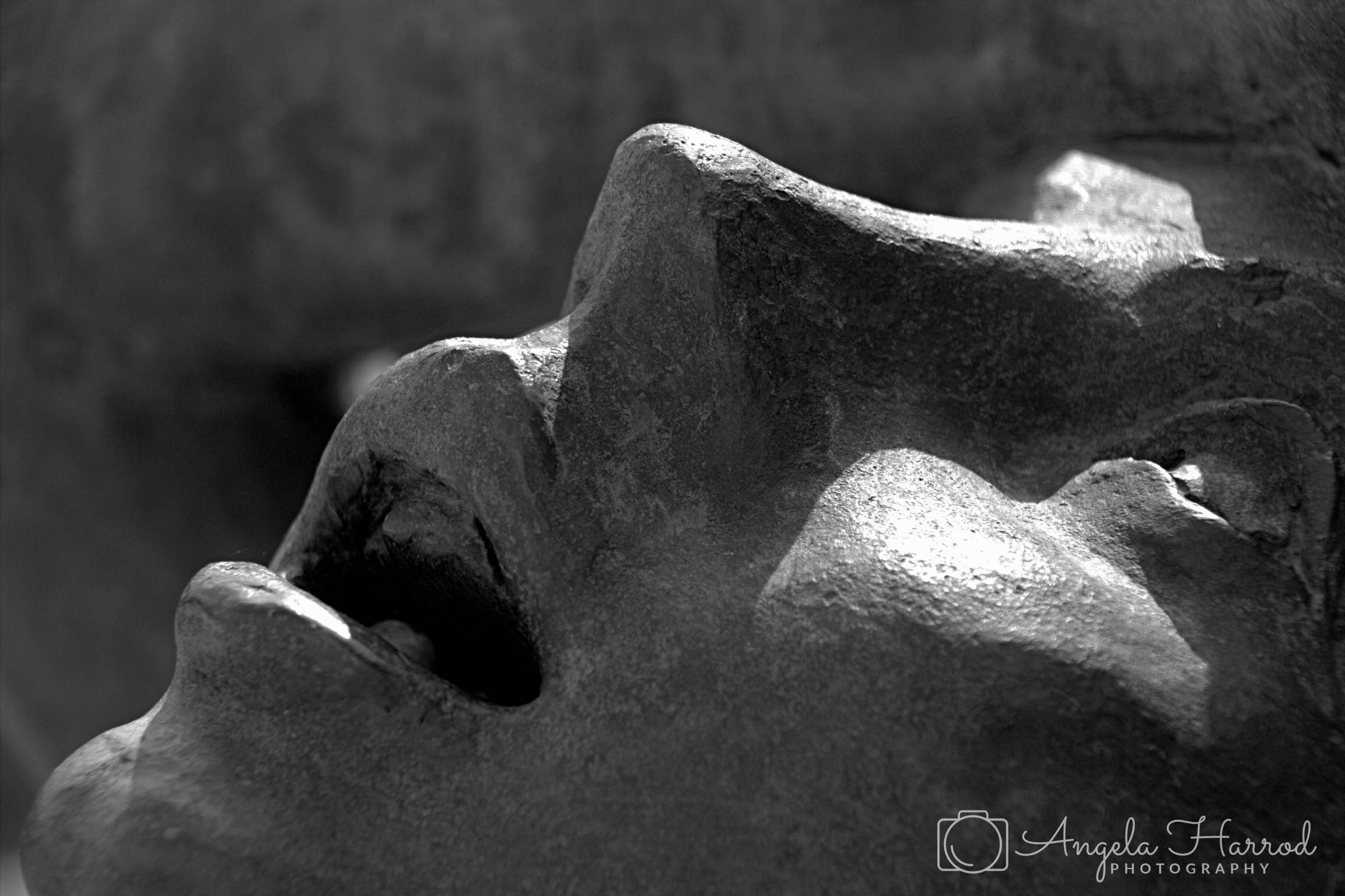 Statue face BW