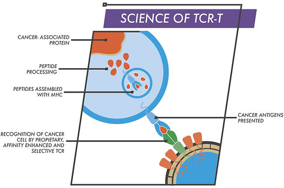 tcrt-2.jpg