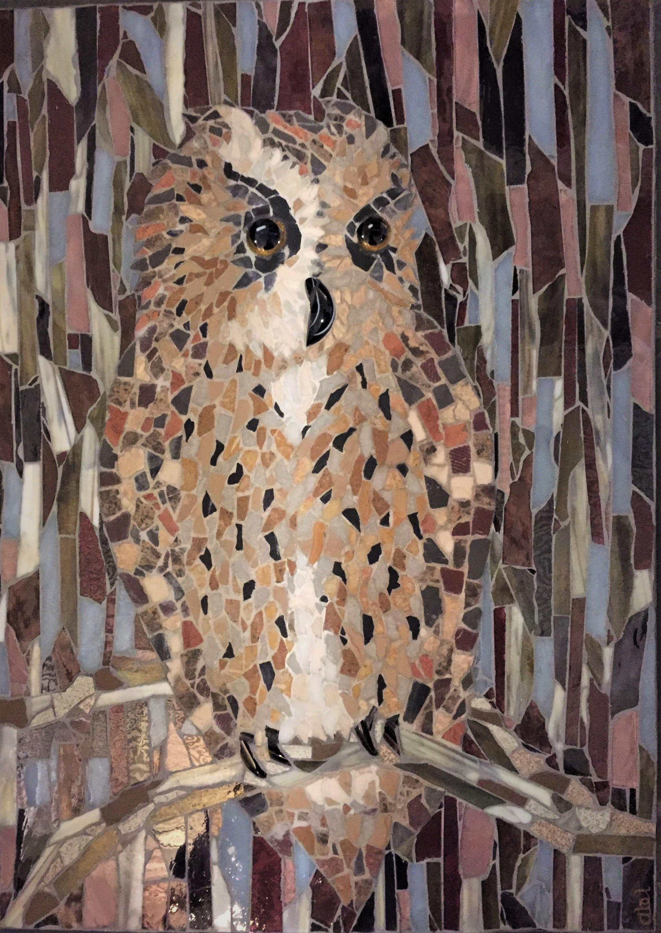 Annobon Scops Owl