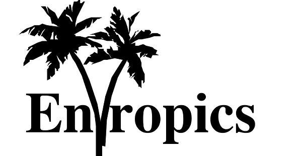 Production in Progress: Entropics