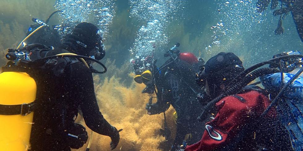 Sep 18, Open Boat Catalina Island
