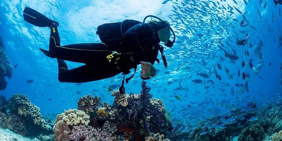 Nov 27, Open Boat Catalina Island-Lobster Dive