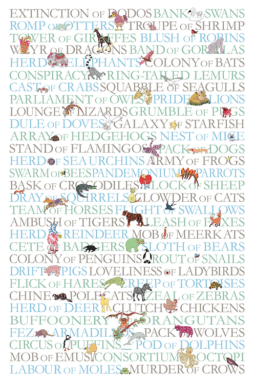 Collective nouns for animals tea towel - pictures and text