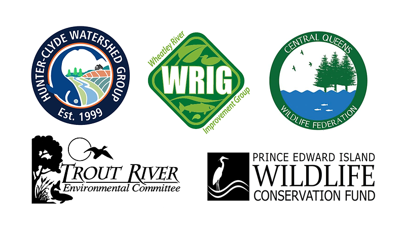 2020 WWT Groups Logo.png