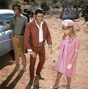 Stay Away, Joe 1968