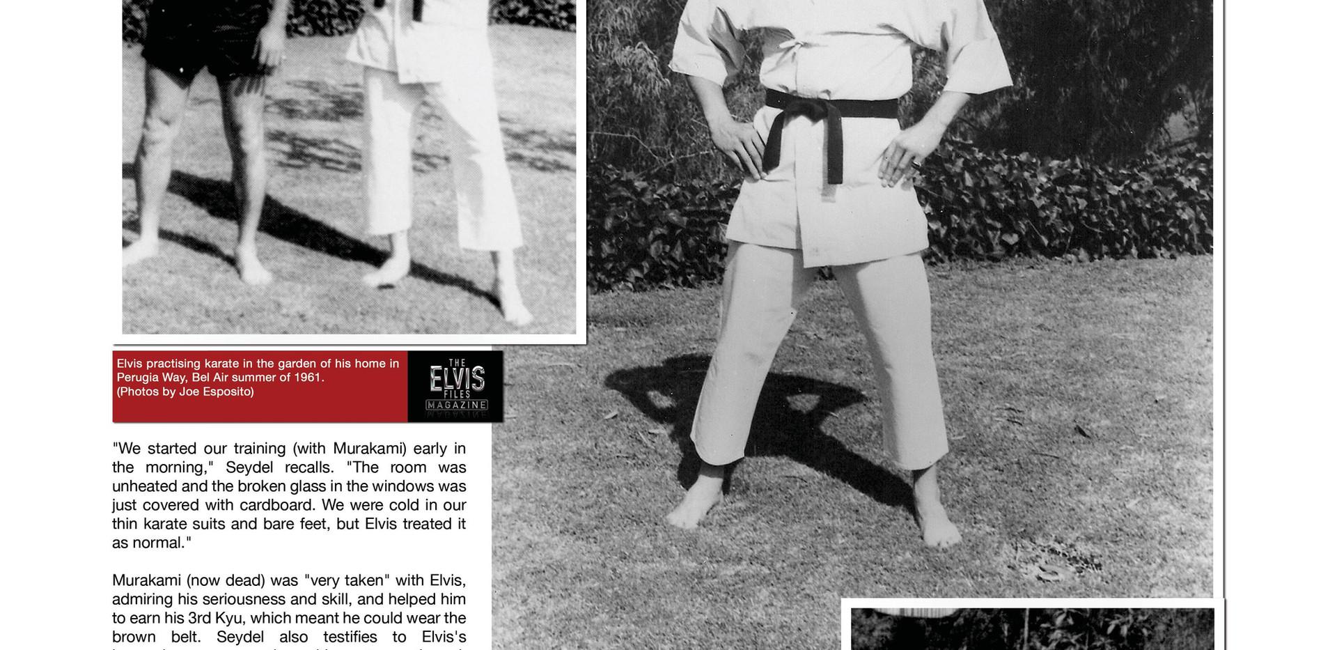 The Elvis Files magazine issue #2 (23)