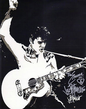 Joe Petruccio art on Elvis (2).jpg