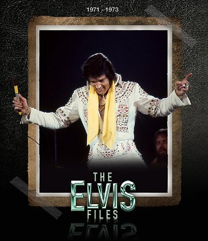 The Elvis Files book Vol.6 1971-1973