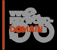 Sichere dir eine TLD mit Keyword-Bezug zum eBike, Pedelec und Smartbike