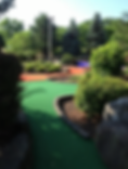 Bumble Bee Hollow Mini Golf