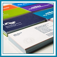 Business Card Design / Business card Printing