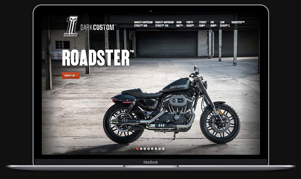 Harley_DarkCustom_laptop.jpg