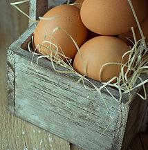 bigstock-Brown-Organic-Eggs-On-Straw-In-