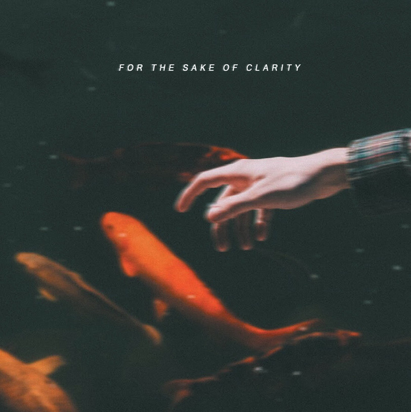 For the Sake of Clarity - Baseline
