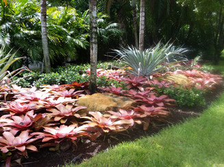 Landscaping with full foliage