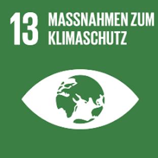 csr SDG 13 solo.png