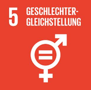 csr SDG 5 solo.png