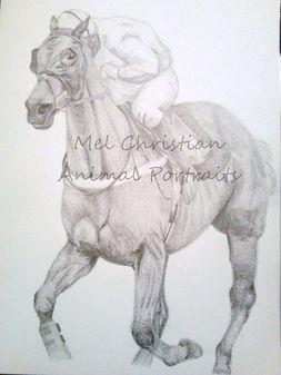 Graphite Horse Drawing Portrait