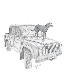 Realistic Graphite Land Rover Dog Portrait Drawing Commission