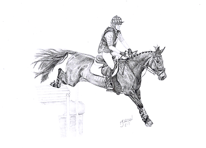 Realistic Life Like Graphite Horse Drawing Portrait Commission