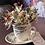 Thumbnail: tazza da te fiori secchi