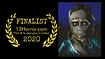 Finalist laurels 2020.png