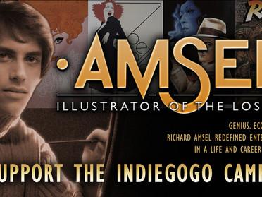The INDIEGOGO campaign...