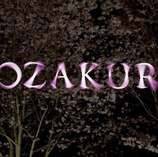 Documentation of Yozakura
