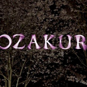 Documentation of Yozakura