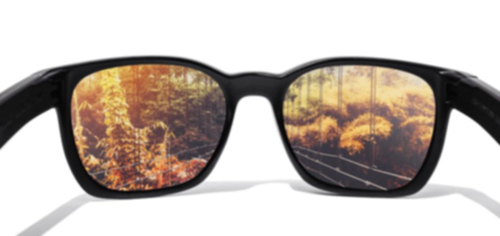 glasses-100 (1) (1).png