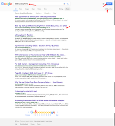 SME Advisory Firms   Google Search.png