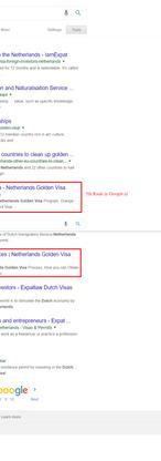 Netherlands based Visa Consulting Wix SEO