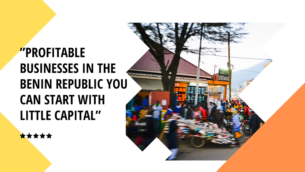 Profitable Businesses in the Benin Republic you can start with Little Capital | Kafui & Partners