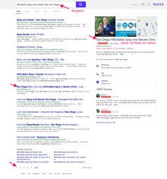 San Diego Based Spay & Neuter Weebly SEO Ranking Proof