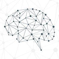 brain-16.jpg