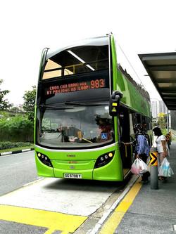 Bus 983.jpg