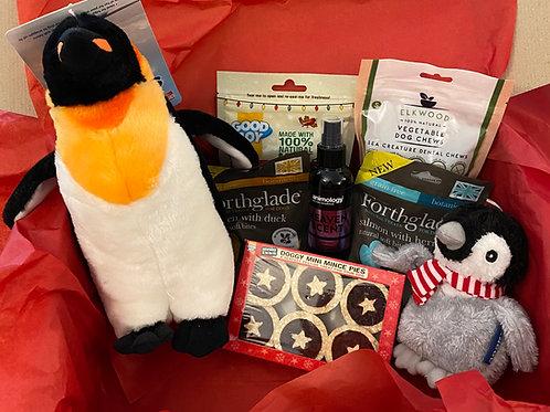 Christmas Cologne dog gift box