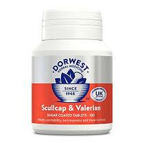 Dorwest scullcap & Valerian.jpg