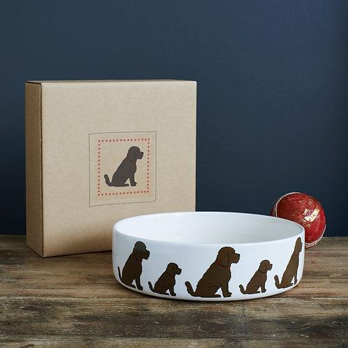 Cockapoo dog bowl