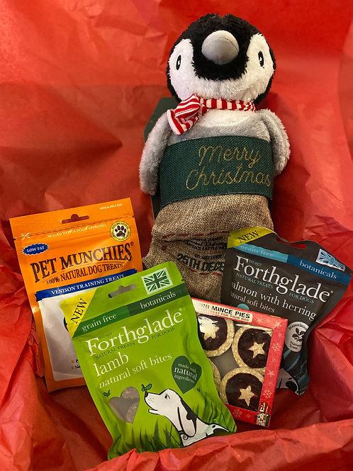 Christmas dog stocking with added bonus