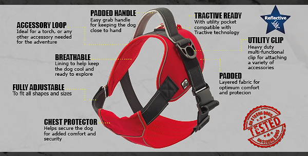 harness 1.png