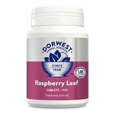Dorwest raspberry leaf.jpg