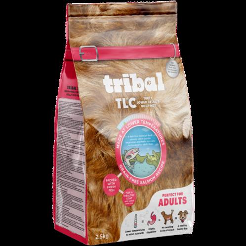 Tribal Adult Grain Free Salmon Recipe
