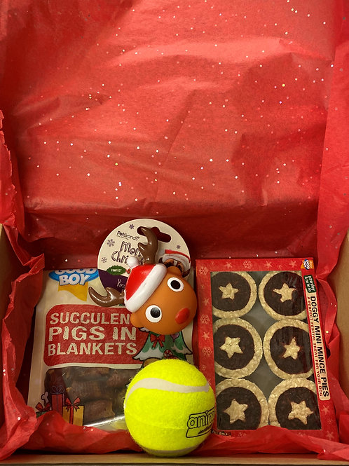 Christmas Stocking Filler Dog Gift Box