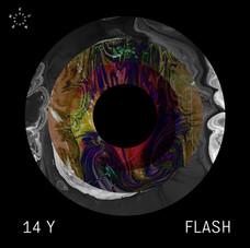 14 Years Flash Recordings