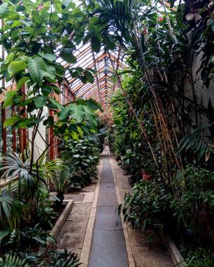 Cambridge Botanical Garden