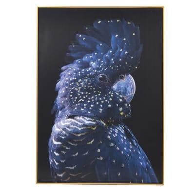 Blue Parrot Picture