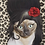Thumbnail: Tattoo Pets Rock Cushion